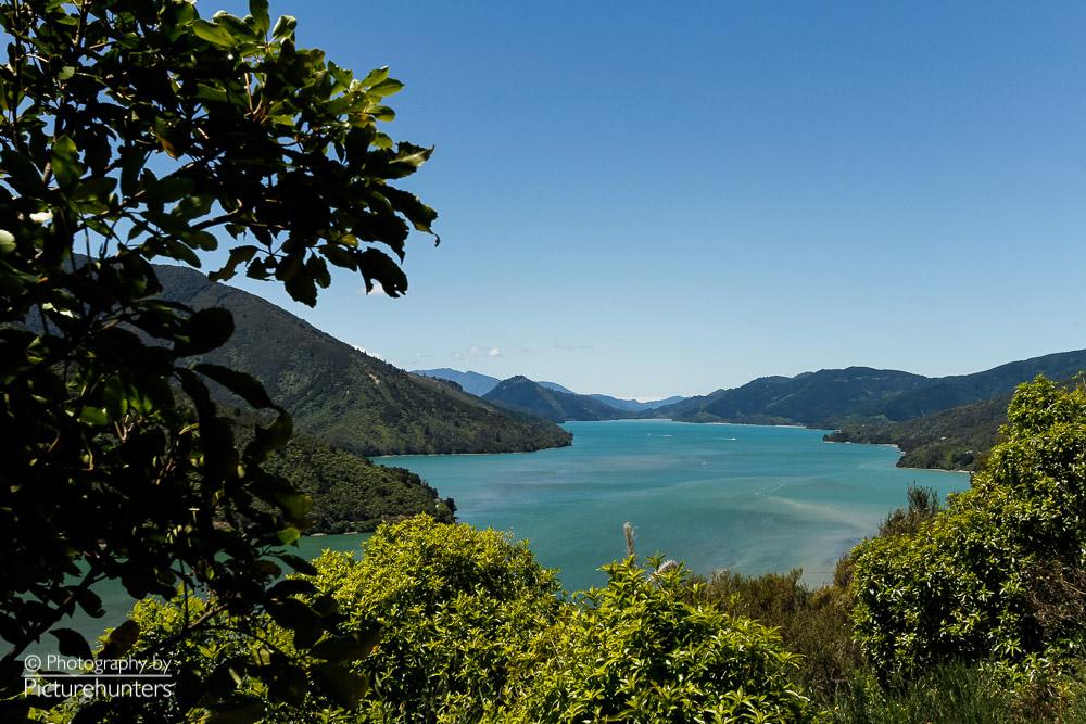 In den Sounds der Südinsel