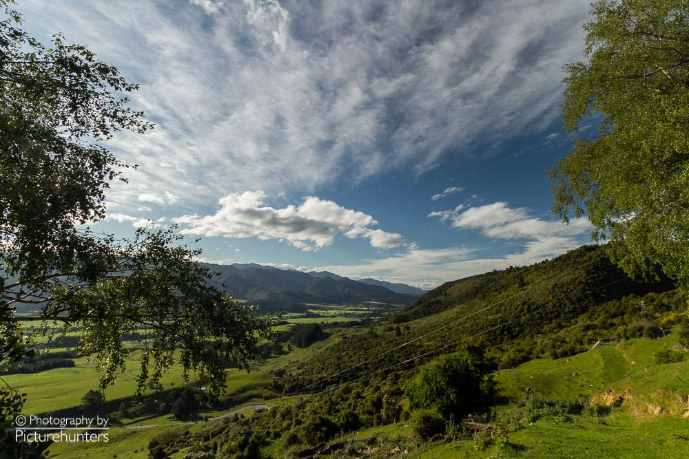 Grüne Hügel