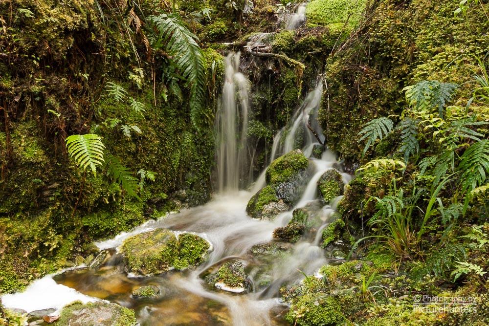 Kleiner Wasserfall am Lake Matheson