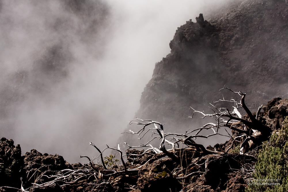 Nebel auf dem Muchachos