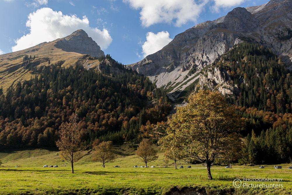Berge und Bäume