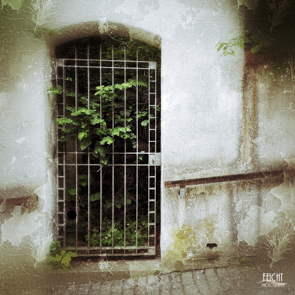 Tür in Freising