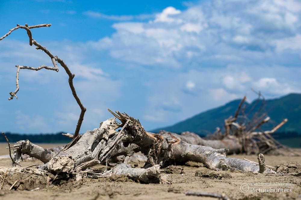 Seegrund-Fundstück