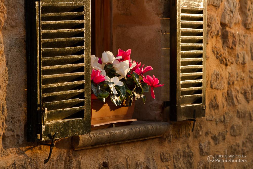 Blumentopf in einem Mallorcafenster