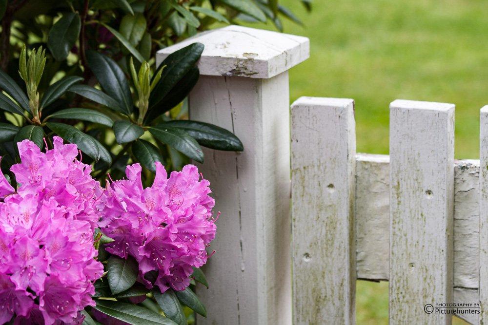 An einem Gartentor