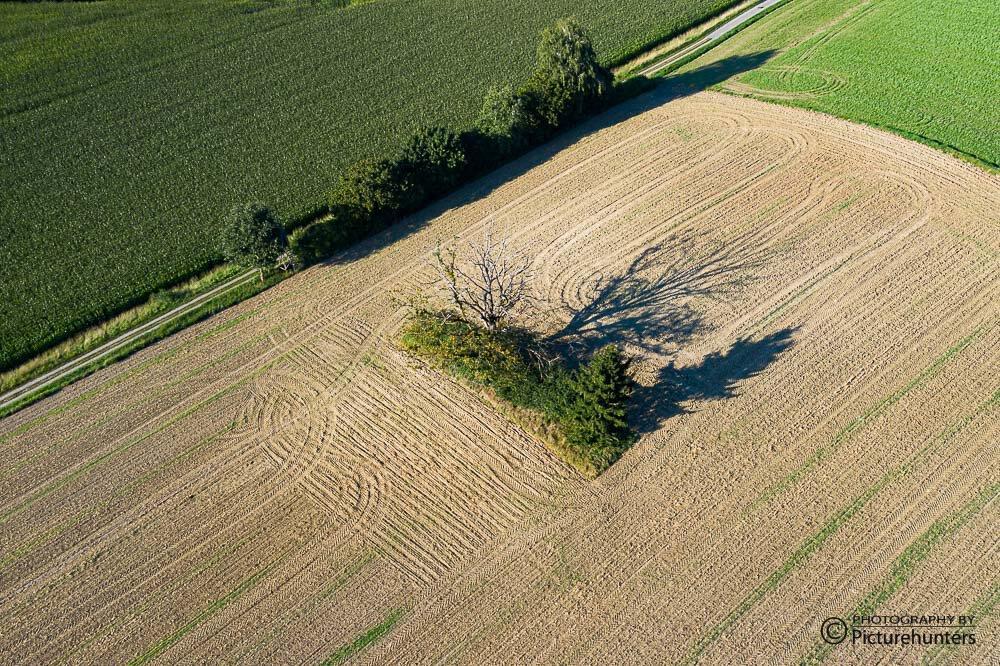 Felder und Schatten