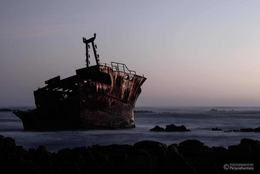 Wrack am Cape Agulhas