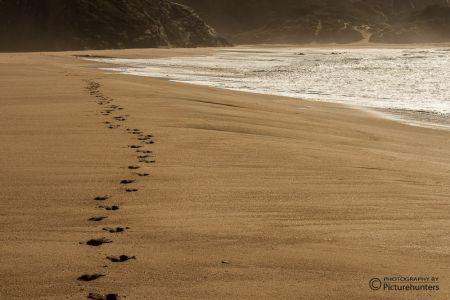 Spuren im Sand bei Sagres | Portugal