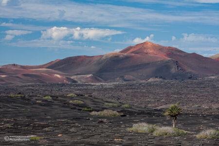 Blick zu den Vulkanen