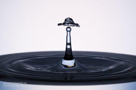 Wasserhut