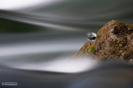 Lensball und Wasser