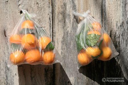Fornalutx - Orangenlieferung
