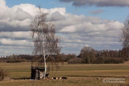 Felder bei Freising