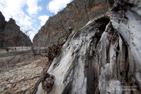 Holzdetail in der Torrent de Pareis