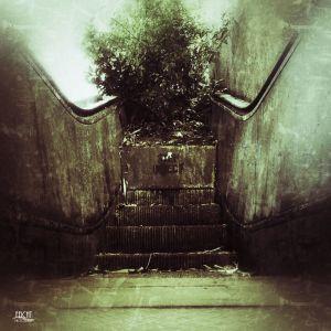 Rolltreppe mit Baum