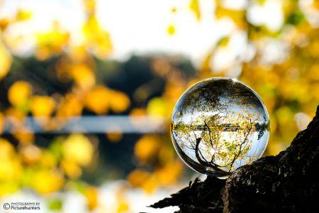 Lensball im Herbst