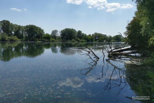 Neben der Donau