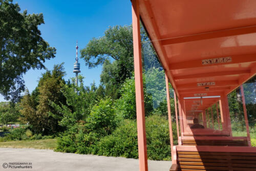 Zugfahrt im Park