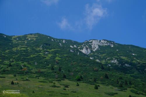 Blick zum Berg
