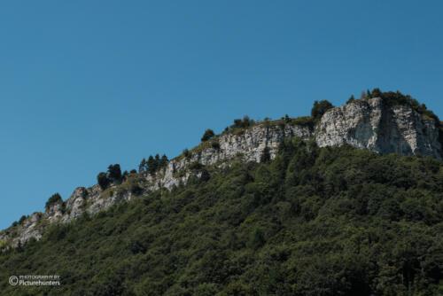 Wald und Felswand