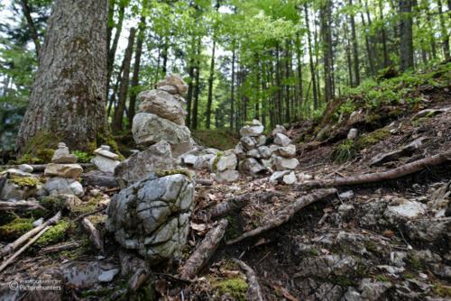 Stoamandl-Wald