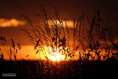 Wunderbare Lichtstimmung